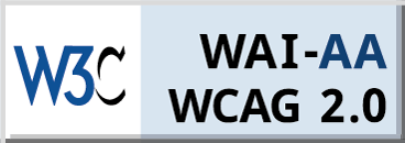 Conformance to WCAG 2.0 at Level AA